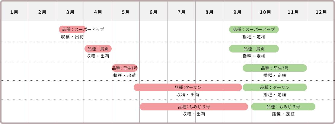 収穫時期カレンダー